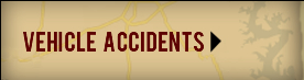 View Vehicle Accidents